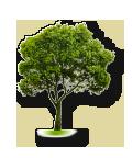 Районирование и анализ уровня озеленения территории г. Волжского