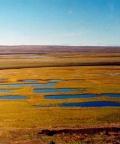 Расчет глубины оттаивания и влагосодержания талого слоя торфяной залежи на полигональных болотах